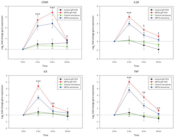 Real time qRT-PCR analysis of the CD40, IL1B, IL6 and TNF genes following infection with M. avium subsp. paratuberculosis . Log 2 fold-changes in expression in the M. avium subsp. paratuberculosis -infected MDM (MPTb) relative to the non-infected control MDM at all three time points are shown. All data presented is based on the conventionally-prepared cDNA template. For comparison, the expression profiles for these genes as per the microarray data are also shown. The significance of the fold-changes in expression for each gene based on the real time qRT-PCR analysis only are denoted by asterisks in the figure (* P ≤ 0.05, ** P ≤ 0.01, *** P ≤ 0.001). In addition, the log 2 fold-change in expression for the non-infected control MDM at each time point relative to the 0 hour non-infected control MDM are also shown for both the microarray and real time qRT-PCR data; no significant differences in gene expression between the non-infected control MDM relative to the 0 h non-infected control was observed at each time point ( P ≥ 0.05).