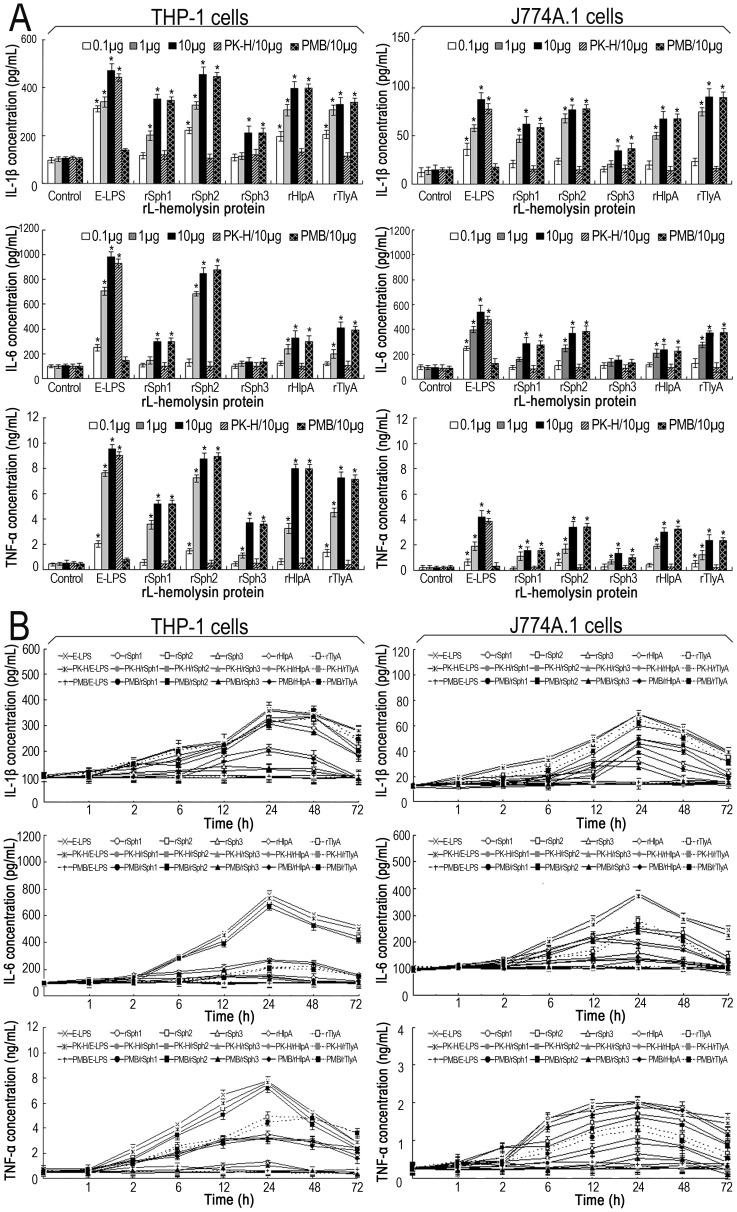 Ability of the rL-hemolysin proteins to induce IL-1β, IL-6 and TNF-α in human and mouse macrophages. (A). IL-1β, IL-6 and TNF-α levels in human THP-1 and mouse J774A.1 macrophages induced by each of the rL-hemolysin proteins for 24 h with the indicated protein concentrations. Bars show the mean ± SD of three independent experiments. E-LPS indicates the LPS of E. coli serotype O111:B4. PK-H indicates that the rL-hemolysins or E-LPS were pretreated with proteinase K digestion plus heat-inactivation while PMB indicates that the rL-hemolysins or E-LPS were pretreated with polymyxin B blockade, and used as controls to monitor possible contamination with E. coli LPS in the rL-hemolysin proteins. Controls indicate the IL-1β, IL-6 and TNF-α levels in the THP-1 or J774A.1 macrophages before treatment with any rL-hemolysins or E-LPS. E-LPS indicates the LPS of E. coli serotype O111:B4. * P