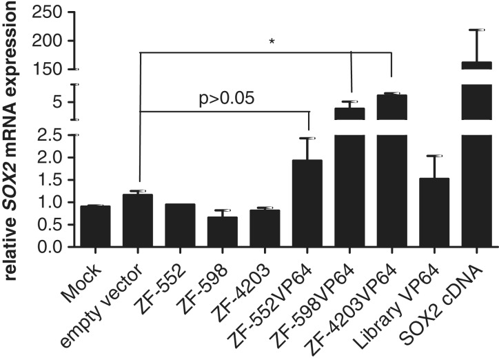 6ZF domains linked to transcriptional activators enhance SOX2 mRNA expression in MDA-MB-435s cells. Cells were retrovirally transduced with either ZF-552, ZF-598 or ZF-4203 (retroviral constructs expressing the specific DNA-binding domains but lacking the SKD effector domain or with the same ZFs linked to the VP64 transactivator domain (ZF-552VP64, ZF-598VP64, ZF-4203VP64). Library-VP64 sample refers to a pool of ∼10 6 different 6ZF domains ( 48 ). Quantification of SOX2 mRNA cells was analyzed by qRT-PCR and normalized to empty vector control. (* P