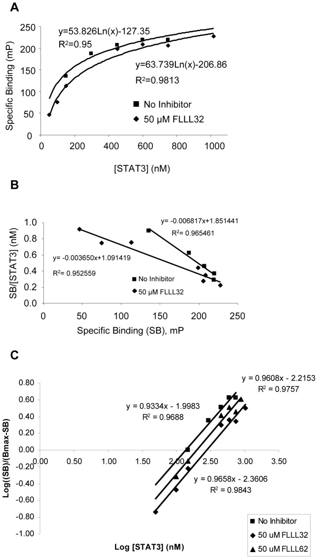 FLLL32 and FLLL62 inhibit STAT3 dimerization in vitro . (A) Saturation curves for fluorescence polarization assay. Data represent the change in specific binding observed when 4 nM 5-FAM-SpYLPQTV was incubated with increasing concentrations of STAT3 in the presence and absence of 50 µM FLLL32. (B) Scatchard Plot analysis of the binding of 4 nM 5-FAM-SpYLPQTV in the presence and absence of 50 µM FLLL32 over increasing concentrations of STAT3. Specific binding was plotted along the x-axis while the quotient of the specific binding divided by the corresponding concentration of STAT3 was plotted along the y-axis. The slope of each data set is equal to −1/K d while the x-intercept is equal to B max . (C) Hill Plot analysis of the binding of 4 nM 5-FAM-SpYLPQTV in the presence and absence of 50 µM FLLL32 and FLLL62 over increasing concentrations of STAT3. The log of the quotient of the specific binding divided by the difference between the B max and specific binding is plotted along the y-axis while the log of the corresponding concentration of STAT3 is plotted along the x-axis. A slope of 1 indicates noncooperativity in binding. A right-handed shift of the plot shows an increase in the K d .
