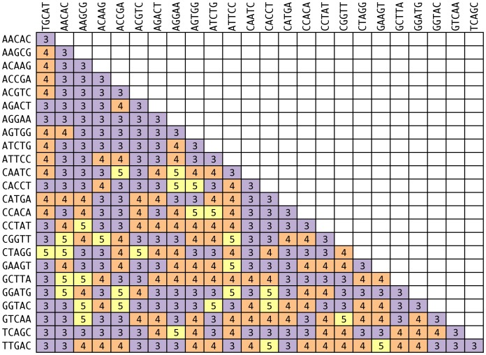 Pairwise edit distance between 25 tags of five nucleotides in length and edit distance three designed using EDITTAG.