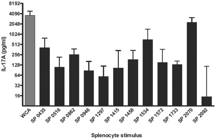 Stimulation of splenocytes from immune mice with purified recombinant proteins. Mice (n = 7–10) were intranasally immunized with WCC and cholera toxin as described. Splenocytes from immunized mice were stimulated with 10 μg/ml of the indicated recombinant protein for 3 days, after which supernatants were harvested and assayed for IL-17A concentration. Values are normalized to the DMEM stimulated response for each animal. Bars represent medians with interquartile ranges.