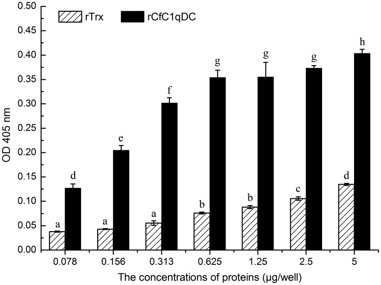 ELISA analysis of the interaction between rCfC1qDC and human heat-aggregated IgG. Plates were coated with various PAMPs several concentrations of rCfC1qDC and rTrx, and then incubated with human heat-aggregated IgG. The interaction was detected with <t>goat–anti-human</t> <t>Ig-alkaline</t> <t>phosphatase</t> <t>conjugate</t> at 405 nm. Results are representative of average three such experiments.