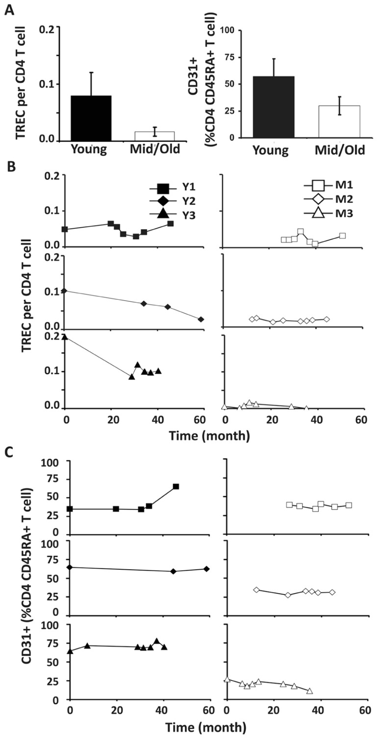 Decreased thymic CD4 output was observed in young but not middle-aged donors. (A) TREC counts (left) and CD31 + percentages in naïve CD4 T cells (right) of young and middle-aged donors. PBMC were isolated from leukapheresis blood and CD4 T cells were further isolated via positive selection. TREC content was examined longitudinally by Taqman Real time PCR. CD31 expression was determined by flow cytometry analysis. The average of all time points were presented with the SD ( P ≤ 0.05). (B) TREC frequencies in CD4 T cells isolated from young (left panels) and middle-aged (right panels) donors are shown. (C) CD31 + CD45RA + CD4 T cells.