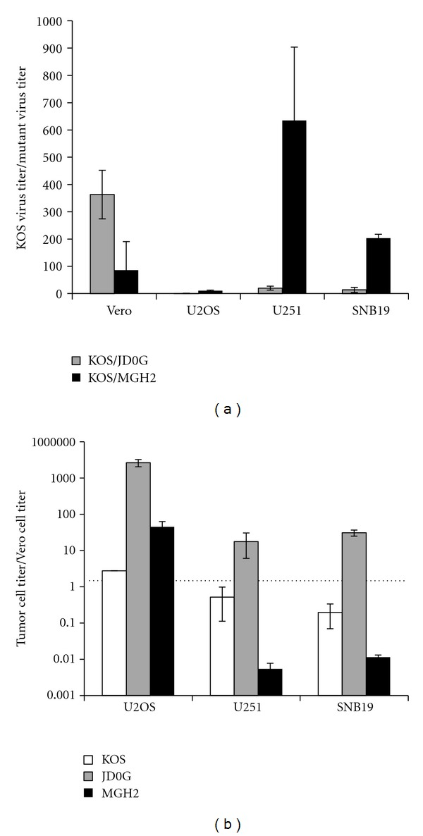 JD0G infection of glioblastoma cells results in efficient virus replication and tumor-selective cell death. (a) The replication of JD0G was evaluated in comparison to KOS and MGH2. HEL, U251, and SNB19 cell lines were infected in parallel with KOS, MGH2, or JD0G at an MOI of 0.1 based on U2OS titers. Supernatants were collected at 24 hpi, and the amount of virus produced was assessed by titration on U2OS cells. The data represent the average of three independent infections, and error bars represent the standard deviation. For all three viruses the differences in virus yield observed between HEL cells and either glioma cell line are statistically significant as determined by the student t -test ( P values less than 0.03). (b) Tumor-specific cell death was assessed by counting the number of surviving cells following infection with either JD0G or MGH2 virus. HEL, U251 or SNB19 cells were infected at an MOI of 0.1, and Trypan Blue staining was performed to count the number of viable cells 48 h postinfection. The data represent the average of three independent infections, and error bars represent the standard deviation. All differences are statistically significant ( P values less than 0.01).
