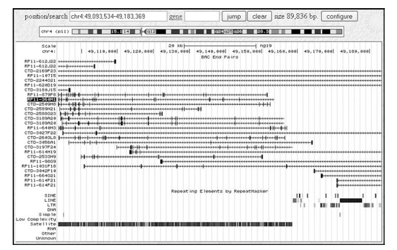 Screen dump of the UCSC Genome Browser display showing the BAC ends mapped to the region chromosome 4: 49,093,534 bp to 49,183,369 bp. The alignment BAC clone end sequences with the draft sequence of the human genome places BAC RP11-360M1 (high-lighted) in a region comprised almost entirely of satellite DNA and completely free of interspersed repeated DNA sequences such as short interspersed repeats (SINEs) or LINEs.