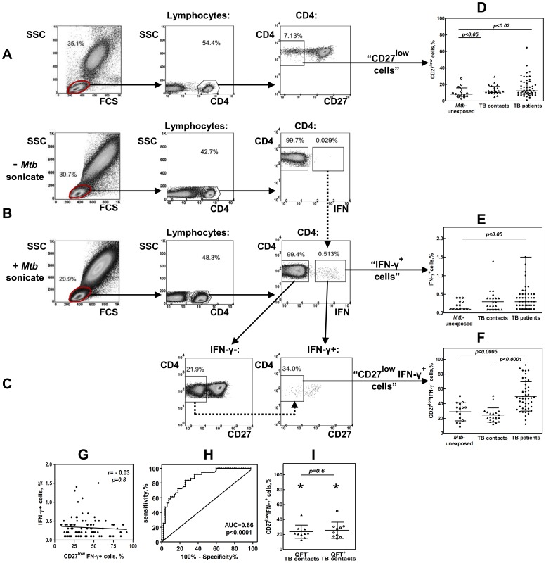 TB patients have increased percentages of CD27 low IFN-γ + CD4 T cells in their blood. A–C, Strategies for determining percentages of CD27 low (A), IFN-γ + (B) and CD27 low IFN-γ + (C) CD4 T cells. A, CD27 low cells were gated within the total population of CD4 + T cells. B, To identify IFN-γ + CD4 T cells, an aliquot of blood was stimulated with Mtb sonicate; another aliquote was left un-stimulated. During the analysis, the gates for IFN-γ + cells in Mtb -stimulated samples were plotted based on Mtb un-stimulated samples (Fig. B, dotted line). To identify CD27 low IFN-γ + cells, the expression of CD27 was first analyzed in IFN-γ − population. Because this population was always numerous, CD27 low and CD27 hi cells could be easily separated. The gates for CD27 low cells were then applied to IFN-γ + population (C, dotted line). D–F, Percentages of CD27 low (D), IFN-γ + (E), and CD27 low IFN-γ + (F) cells in TB patients (n = 50), TB contacts (n = 21) and Mtb -unexposed individuals (n = 15). G, Lack of correlation between the percentages of IFN-γ + and CD27 low IFN-γ + cells in TB patients, TB contacts and Mtb -unexposed individuals (n = 86). H, ROC-curve of CD27 low IFN- γ + cell percentages for discriminating TB patients from healthy individuals (TB contacts and Mtb -unexposed). I, Percentages of CD27 low IFN-γ + cells in TB contacts with positive and negative results of QFT assay *p
