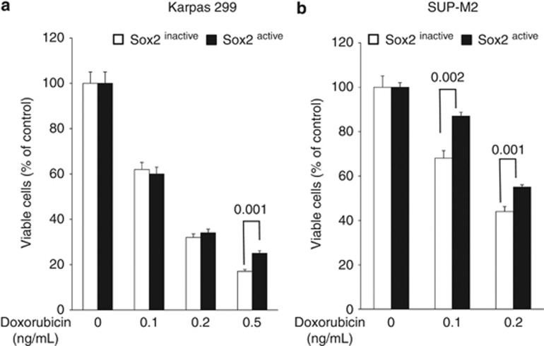Sox2 transcriptional activity correlates with the sensitivity to doxorubicin. Sox2 active subset of cells in both Karpas 299 ( a ) and SUP-M2 ( b ) were more resistant to doxorubicin as compared with the Sox2 inactive subset. Results shown are representative of three independent experiments.