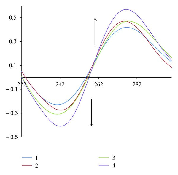 Circular dichroism spectra of CT-DNA (5.9 × 10 −5 M) in Tris buffer (10 mM), in the presence of increasing amounts of the complex.