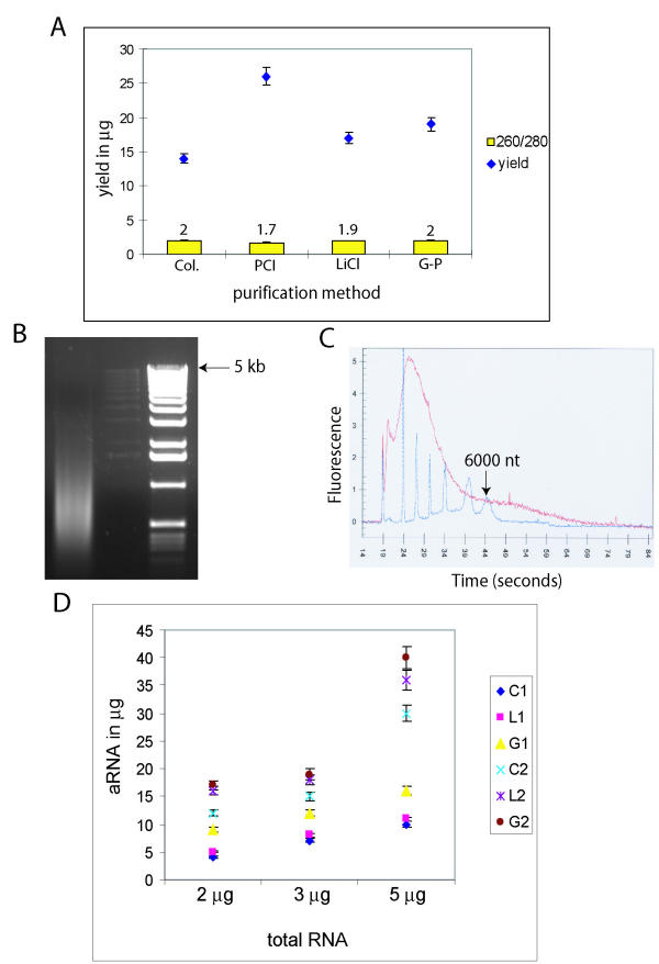 Analysis of aRNA purification . (A) Amplified RNA yields and 260/280 ratios with 4 methods of purification. Col – column; PCI – phenol/chlorform/isoamyl alchohol; LiCl – 2.5 M LiCl; G-P – guanidinium-phenol. (B) 1% denaturing agarose/formamide gel of MCF-7 aRNA purified using column (C) Agilent Bioanalyzer analysis of aRNA (from MCF-7) purified by G-P. 6000 nano marker from Ambion (blue) superimposed on the RNA trace. (D) Plot of aRNA yield in μg for different starting total RNA quantities. C1 – OCUB-M with Col.; L1 – OCUB-M with LiCl; G1 – OCUB-M with G-P; C2 – MCF-7 with Col.; L2 – MCF-7 with LiCl; G2 – MCF-7 with G-P.