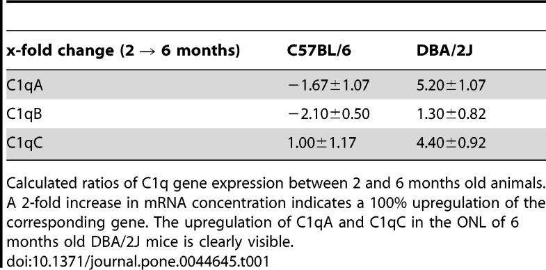 C1qA and C1qC gene expression is upregulated in photoreceptor cells of aging DBA/2J mice. (A) Agarose gels showing <t>PCR</t> fragments that represent the gene expression of C1qA, C1qB and C1qC in the retinae of 2 and 6 months old DBA/2J and C57BL/6 control mice. (B) The expression of C1qA, C1qB and C1qC in photoreceptor cells of 2, 6, and 10 months old DBA/2J mice and age-matched C57BL/6 control mice was compared with PCR. For each age, <t>cDNA</t> obtained from three animals was subjected to triplicate PCR amplifications (n = 9). Statistically significant differences are indicated by asterisks (* p