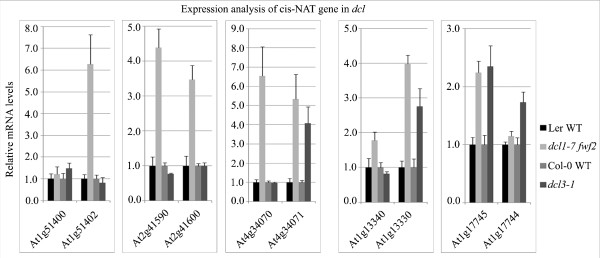 Expression of the NAT transcripts is increased in dcl1 - 7 fwf2 and dcl3 - 1 mutants . Expression was examined by quantitative <t>RT-PCR</t> and Actin2 was used as an internal control. Total RNA (5 μg) was treated with <t>DNaseI</t> and then subjected to reverse transcription. Error bars indicate standard deviations derived from three technical replicates. Similar results were obtained from two biological replicates.