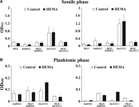Effect of 3 mM HEMA concentration on sessile (A) and planktonic (B) growth phases of Streptococcus mitis DS12 ( Sm DS12) and S. mitis <t>ATCC</t> 6249 ( Sm ATCC) alone and co-cultured on human gingival fibroblasts after 48 and 72 h of treatment.