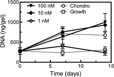 Viability of <t>hMSCs</t> encapsulated in tethered TGF β hydrogels. <t>DNA</t> content of cell-laden hydrogels was assayed over 14 days of culture, and used as a general correlative measure of cell viability. Hydrogels cultured in growth medium (used as a negative control for chondrogenesis) maintained initial cell counts, as did those incorporating 1-nM tethered TGF β . Chondrogenic media samples (positive control) exhibited an increase in DNA of approximately twofold, while TGF β tethered at 10 or 100 nM demonstrated similar increases in DNA content, suggesting high levels of viability of the encapsulated hMSCs. Results are presented as mean ± s.e.m. ( n = 3)