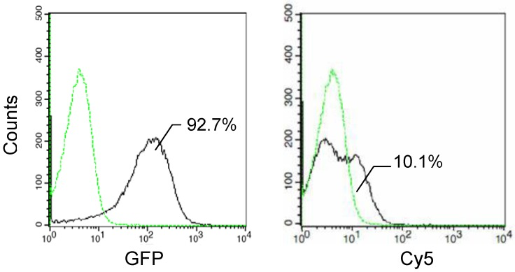 Flow cytometry assay of E. coli JM109/pMB118 cells expressing InaQ-C/GFP. Prior to the assay, the cells were treated with monoclonal anti-GFP primary antibodies, followed with Cy5-conjugated secondary IgG. The value in each histogram indicates the percentage of total Cy5-labeled fluorescent cells.