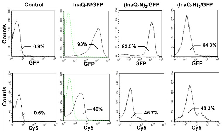 Flow cytometric analysis of E. coli JM109/pMB102, JM109/pMB109, and JM109/pMB110 cells. The cells were labeled with primary monoclonal anti-GFP antibodies, followed with secondary Cy5-conjugated antibodies. The value in each histogram indicates the percentage of total GFP or Cy5-labeled fluorescent cells. E. coli JM109 cells were used as the negative control.