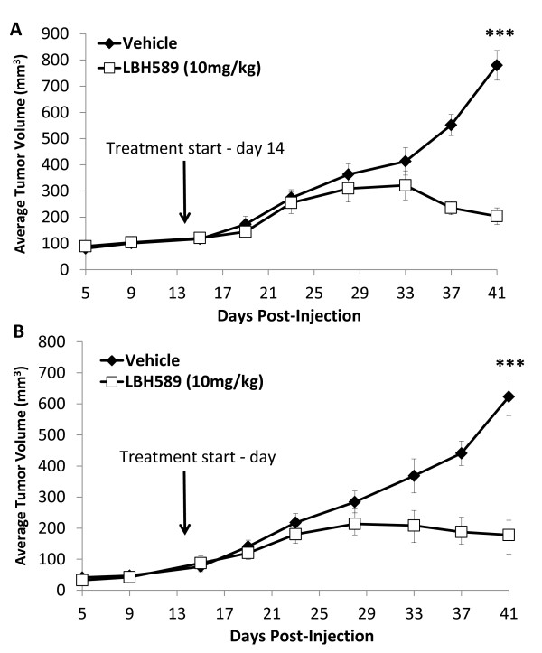 Effect of panobinostat on tumor growth in MDA-MB-231 and BT549 xenograft models . Female, CB-17/SCID mice ( n = 5/group) were injected with (A) MDA-MB-231-tRFP or (B) BT-549-tRFP cells (5 × 10 6 cells/injection) bilaterally into the inguinal mammary fat pad. On day 14, mice were treated intraperitoneally (i.p.) with panobinostat (10 mg/kg) or vehicle (1:20 DMSO in normal saline) five days/week for 28 days. Data points represent average tumor volume ± SEM, (***, P
