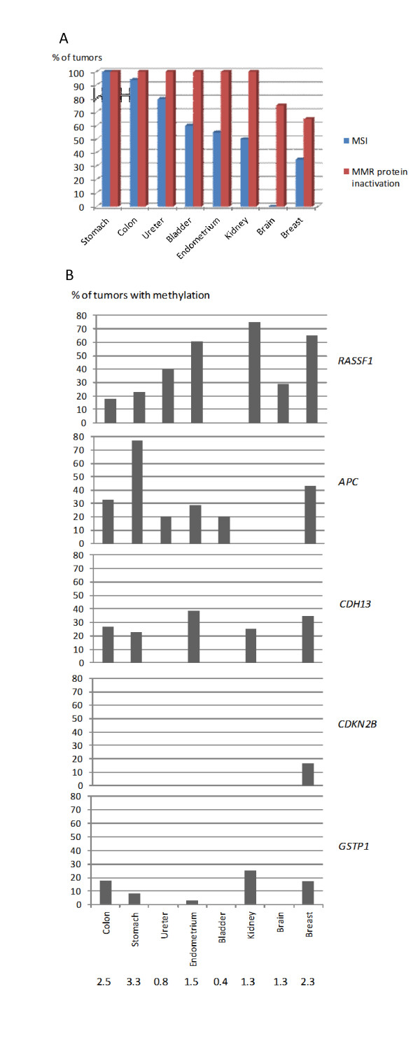 MMR status and TSG methylation in eight different tumor types from mutation carriers . A , for MMR status comparisons, the frequencies of MSI and abnormal IHC in the same tumors are indicated. B , Among TSGs, the top five loci affected by methylation in breast cancer were chosen for display. Dm > 0.25 was used as a cut-off for methylation for all tumors. The average number of methylated TSGs out of 24 per tumor is given below each tumor type. Dm, methylation dosage ratio; IHC, immunohistochemistry; MMR, mismatch repair; MSI, microsatellite instability; TSG, tumor suppressor gene.