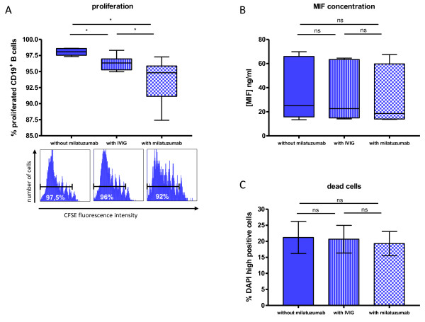 Effects on proliferation of CD19 + B cells and macrophage migration inhibitory factor (MIF) concentration in vitro by milatuzumab . (A) Frequency of proliferated CD19 + /CD3 - /CD14 - B cells according to their carboxyfluorescein succinimidyl ester (CFSE) fluorescence intensity. CFSE-labeled peripheral blood mononuclear cells were cultured for 7 days with or without milatuzumab or intravenous immunoglobulin (IVIG) at 37°C in 5% CO 2 and simultaneously stimulated with IL-2, IL-10, F(ab) 2 , and CpG ( n = 6). Addition of milatuzumab as well as IVIG resulted in a modest, but significant, inhibition of the proliferation (Wilcoxon test). For each condition, a representative histogram is shown. (B) The concentration of the chemokine MIF as a potential ligand of CD74 was tested in cell culture supernatants ( n = 7), as described above, and showed no significant differences between the conditions (Wilcoxon test). (C) Proportion of dead CD19 + B cells, identified as high positive staining with DAPI ( n = 3). There was no substantial influence observed by either IVIG or milatuzumab (Wilcoxon test). * P ≤ 0.05. CpG, cytosine-phosphatidyl-guanosine; DAPI, 4,6 diamidino-2-phenylindole; F(ab) 2 , protein of two antigen-binding fragments; IL, interleukin; ns, not significant.