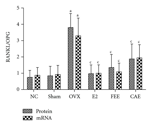 Effects of 12-week treatment with Cortex acanthopanacis extract (CAE) or Folium Epimedii extract (FEE) on ratio between receptor activator of nuclear factor kappa-B ligand (RANKL) and osteoprotegerin (OPG) expression for the NC (normal control rats), Sham (rats with Sham operation), OVX (ovariectomized rats), E2 (rats treated with 17 β -estradiol), FEE (rats treated with FEE), and CAE (rats treated with CAE) groups. Results are expressed as mean ± SD, for n = 12. a P