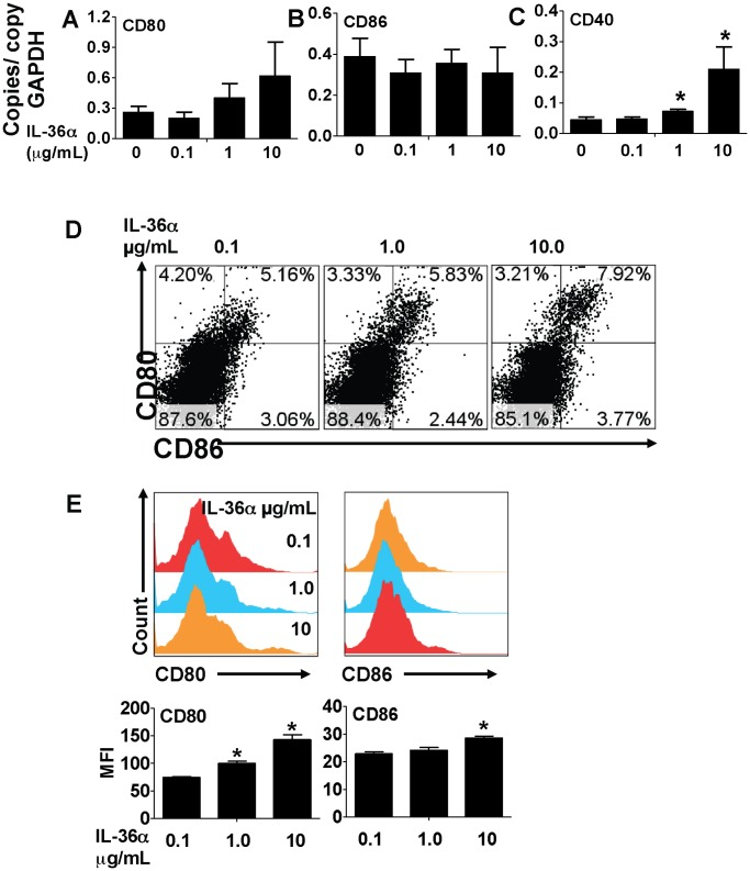 IL-36α induced the expression of T cell costimulatory molecules in splenic CD11c + cells. A–C) Transcript expression of the co-stimulatory molecules CD80, CD86 and CD40 in splenic CD11c + cells 2 h following incubation with increasing concentrations of IL-36α. Transcript expression was evaluated by SYBR-Green based quantitative real-time PCR. *Indicates significant differences ( P