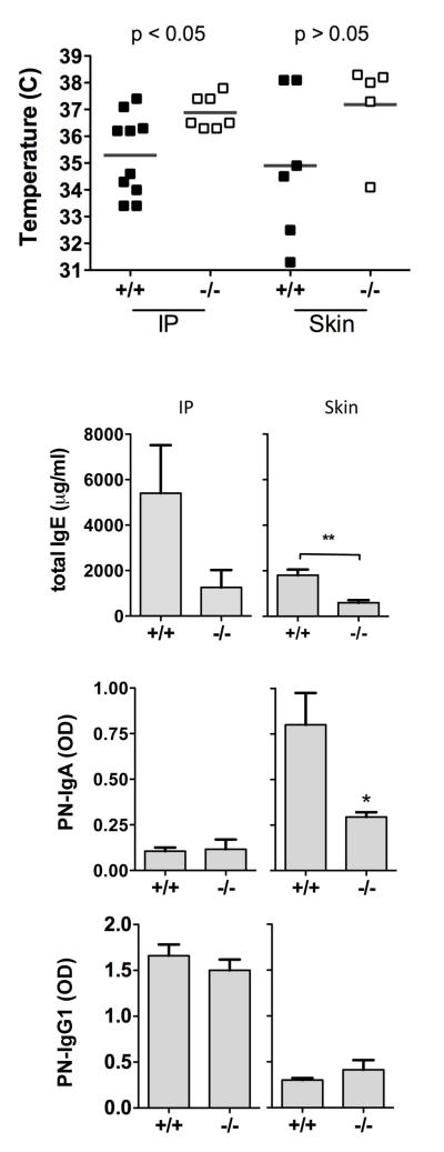 Sensitization to peanut by non-oral routes. TLR9+/+ and −/− mice were sensitized to peanut by intraperitoneal injection with alum (IP), or by repeated epicutaneous exposure (skin). A) Body temperature measured 30 min after intraperitoneal challenge with 500 g of peanut extract. B) IgE, C) <t>IgA,</t> and D) <t>IgG1</t> antibodies were measured in serum obtained 1-2 days prior to challenge. * p