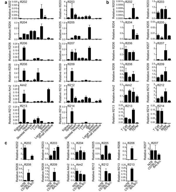 Expression of mouse PYHIN genes in perfused C57BL/6 mouse tissues (a), in various C57BL/6 mouse immune cells – splenic T and B cells, BMM and thioglycollate elicited peritoneal macrophages (TEPM) (b), and in BMM from three different mouse strains (c). Real time <t>PCR</t> results for each gene were normalised to the average of four housekeeping genes, which was found to give a relatively stable signal between tissues. Primers were tested to ensure lack of significant amplification of non-target PYHIN cDNAs. Results shown are the mean and range derived from duplicate <t>RNA</t> preparations.
