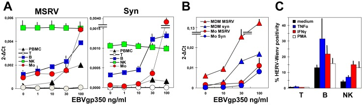 Expression of MSRVenv and syncytin-1 by PBMC subsets exposed to EBVgp350 or proinflammatory cytokines. A. Levels of MSRV env and syncytin-1 mRNAs of PBMC from MSRV(+) HD treated overnight with 1–100 ng/ml of EBVgp350, either as such or separated in T, B, NK and monocyte subsets. B. Comparison of the MSRVenv and syncytin-1 mRNA levels of monocytes and MDM after overnight EBVgp350 treatment. A and B: Data are the means of three experiments run in duplicate, calculated by the 2 −ΔΔCt method; C. Expression of the HERV-Wenv protein on the plasma membrane, evaluated by flow cytometry as present env-specific positivity of PBMC treated for 24 h with TNFα (1 ng/ml), IFNγ (1000 IU/ml), or PMA (50 NM); the bars indicate standard deviations.