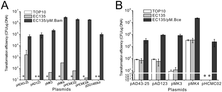 Transformation efficiency of B. amyloliquefaciens TA208 and B. cereus ATCC 10987 with various shuttle plasmids. (A) Transformation efficiency of the B. amyloliquefaciens TA208 strain with various shuttle plasmids prepared from the E. coli TOP10, EC135 and the EC135 harboring pM.Bam. (B) Transformation efficiency of the B. cereus ATCC 10987 strain with various shuttle plasmids prepared from the E. coli TOP10, EC135 and the EC135 harboring pM.Bce. Transformation efficiencies shown are averages of at least three replicates ± SD. * Not Detected.