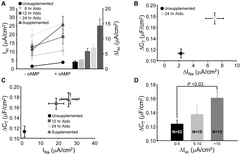 Aldosterone restores I SC and C T responses to cAMP stimulation. (A) Cells in unsupplemented media were incubated with 100 nM aldosterone for increasing time and stimulated with forskolin. The basal (-cAMP) and forskolin stimulated (+cAMP) currents from cells with no aldosterone (unstimulated), 6, 12 and 24 hr aldosterone stimulation were compared to cells which received fully supplemented medium (supplemented). The average I SC response to cAMP stimulation is plotted as a bar graph on the right (n = 16). (B) The change in capacitance (ΔC T ) versus change in amiloride-sensitive I SC (ΔI Na ) in response to forskolin stimulation is summarized for cells without supplementation and 24 hr stimulation with aldosterone. Both I SC and C T responses were significantly greater in the aldosterone treated cells compared to unsupplemented controls (n = 16, p