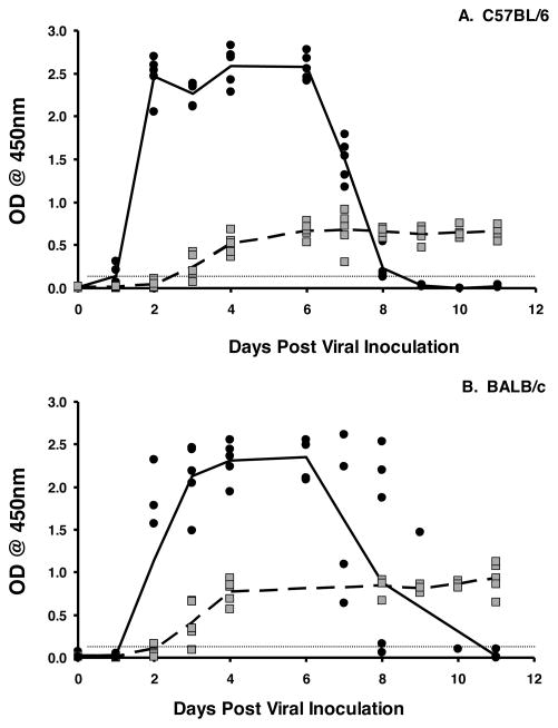 Induction of fecal IgA coincides with clearance of rotavirus infection in mice C57BL/6 (A) and BALB/c mice (B) mice were orally inoculated with 10 3 ID 50 of EC wt rotavirus on day 0. Fecal pellets were collected every day and analyzed for the presence of the VP6 middle capsid protein by ELISA (mean values shown by solid line) or the presence of rotavirus-specific IgA (mean value shown by dotted line). Each symbol represents the OD of either antigen (black circles) or antibody (grey squares) present in the stool of an individual mouse. Horizontal line indicates limit of detection of the assay.