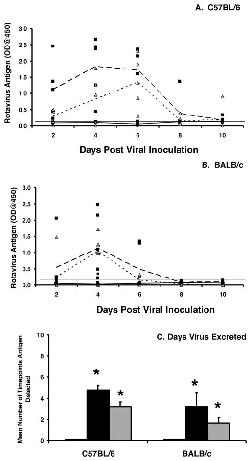 IgA is required for protection from a secondary rotavirus infection C57BL/6 (A) and BALB/c (B) wild type or IgA −/− mice were orally inoculated with 10 3 ID 50 of EC wt rotavirus and received a secondary inoculation with 10 3 ID 50 EC wt either six weeks or twelve weeks later. Fecal pellets were collected every other day and analyzed for the presence of the VP6 middle capsid protein by ELISA. Each symbol represents the OD obtained from an individual wild type mouse (black circles) or IgA −/− mouse at six weeks (black squares) or 12 weeks (grey triangles). The mean antigen OD values for the groups are indicated for wild type (solid line) and IgA −/− at either six weeks (large dotted line) or twelve weeks (small dotted line). Horizontal line indicates limit of detection of the assay. C, the mean number of time points antigen was detected in fecal samples for each group. White bar, wild type mice, six or twelve week challenge (no antigen shedding at either time point); black bar, IgA −/− mice, six week challenge; grey bar, IgA −/− mice, twelve week challenge. Each bar represents the mean for each group+SD (n=5–6 mice/group). *, p