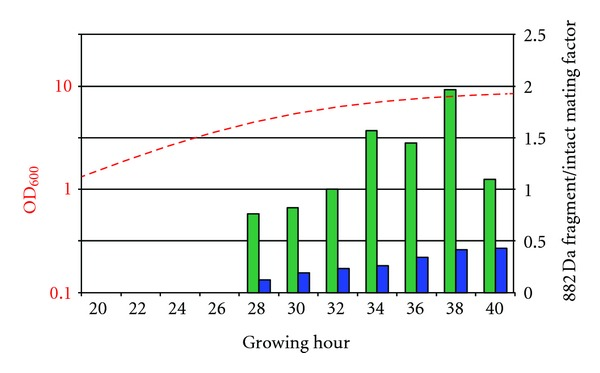 Ratio of 881.45 Da fragment to intact mating factor (1682.84 Da plus 1698.83 Da; right scale). No mating factor or fragments are detected in first 4 investigated time points. At later time points ratios between 0.8 and 2 for culture grown under standard conditions were obtained (right scale, green bars). Note significant reduction of relative amount of 881.45 Da fragments in pepstatin-containing culture (blue bars). Dashed, red curve (left, logarithmic scale) plots growth curve of cells.