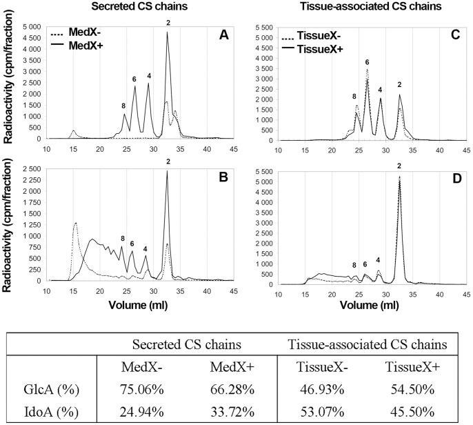 Content and distribution of IdoA residues in CS/DS chains from RDs. Secreted and tissue-associated CS/DS from control RDs (---) and C-Xyloside treated RDs ( ) were degraded by exhaustive treatment with chondroitinase AC-I ( A, C ) or chondroitinase B ( B, D ). Digests were then analysed by size-exclusion chromatography, using two Superdex Peptide columns in series. Elution positions of size-defined oligosaccharides are indicated. The distribution of each oligosaccharide and the ratio of iduronic acid (IdoA) and glucuronic acid (GlcA) are reported in the table.