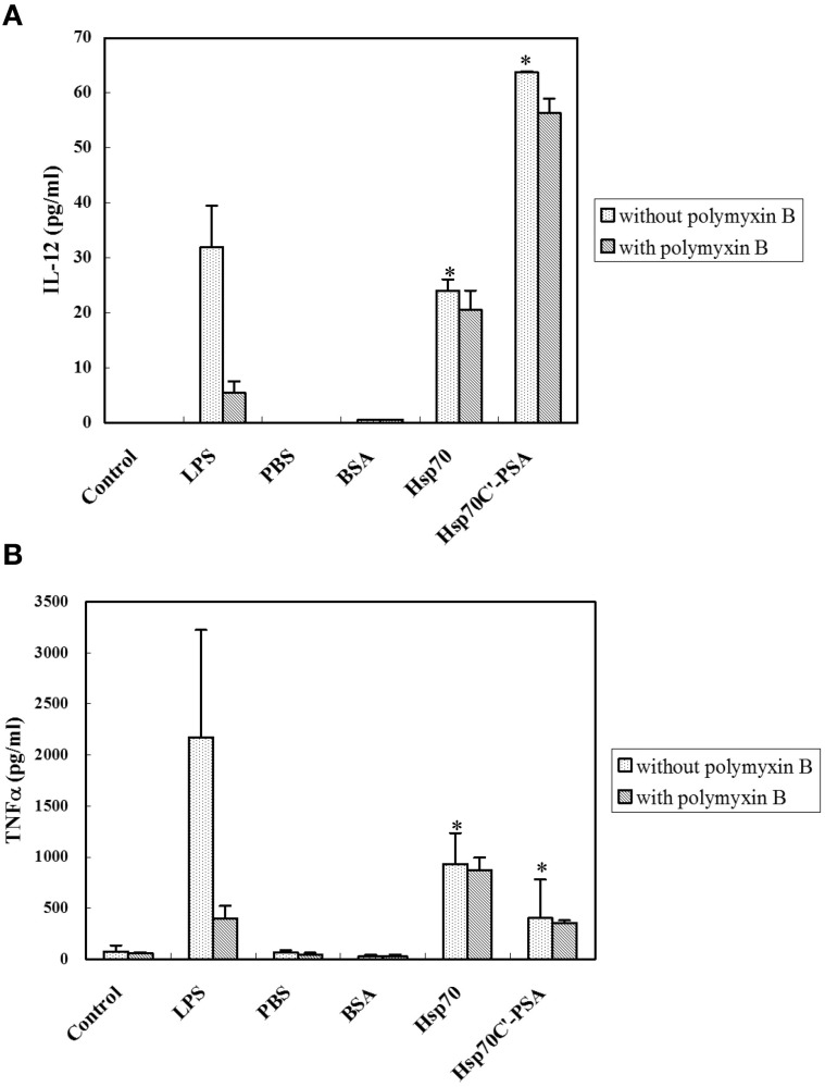 Exogenous rHSPs enhance the expression of pro-inflammatory cytokines. BM-DCs (1.5 × 10 6 in 1 ml) were incubated with medium alone (control) or LPS (10 μg/ml) or were cocultured at 37°C for 24 h with irradiated-CT26/PSA cells (1.5 × 10 6 in 1 ml) of PBS or 10 μg/ml of BSA, rHsp70, or rHsp70C′-PSA in the absence or presence of 10 μg/ml of polymyxin B. The supernatants were then harvested and the concentration of IL-12 (A) or TNF-α (B) measured by ELISA. The data are the mean ± SD for three-independent experiments. * Indicates p