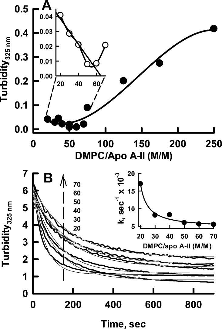 Apo A-II concentration dependence of rHDL formation. (A) Determination of the DMPC/apo A-II stoichiometry according to the increase in turbidity produced by excess MLV. The inset shows the maximal stoichiometry of 65/1 for solubilization of DMPC by apo A-II was determined by extrapolation. (B) Kinetics of formation of rHDL from DMPC as a function of added apo A-II according to the disappearance of MLV turbidity. The DMPC/apo A-II molar ratios for the top (70/1) to bottom (20/1) curves are given. The black and gray curves are the data and the fit of the data, respectively. The inset shows the first-order rate constant calculated from curve fits of Figure 1 B as a function of DMPC/apo A-II molar ratio.