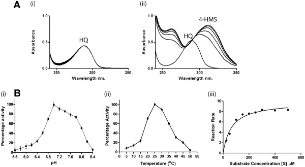( A ) Enzyme activity of hydroquinone dioxygenase assayed by UV-Visible spectrophotometer. ( i ) Negative control for the hydroquinone transformation E. coli BL21-AI (without pDEST-pnpE1 and pDEST-pnpE2) cell lysate ( ii ) Hydroquinone transformed into γ-hydroxymuconic semialdehyde and detected at the wavelength 320 nm. ( B ) The percent activity of the hydroquinone at different ( i ) pHs, ( ii ) Temperatures and ( iii ) The Michaelis-menten curve for the hydroquinone dioxygenase activity.
