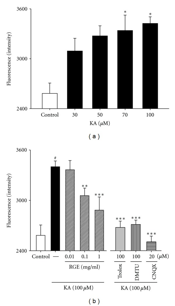 Effects of RGE and scavengers against oxidative stress in primary cultured hippocampal cells. (a) Concentration data for KA-induced ROS levels in primary cultured hippocampal neurons. Examination of the dose effect of KA on neuronal ROS level by the DCFH-DA assay. Neurons were exposed to KA at concentrations of 0, 30, 50, 70, and 100 μ M for 48 h. (b) Protection of hippocampal neurons against KA-induced ROS levels by RGE. Neurons were exposed to 100 μ M KA at 1 h after 0.01–1 mg/mL of RGE, trolox (100 μ M), or DMTU (100 μ M) treatment. All data are presented as means ± SE. ### P