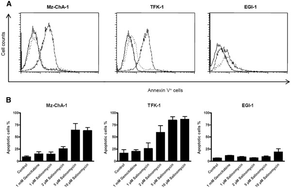 Salinomycin induces apoptosis in human CC cells. 1 x 10 6 Mz-ChA-1, TFK-1 and EGI-1 cells were cultured until confluence, followed by subsequent incubation of cells in the absence or presence of 1 mM Gemcitabine, 1 μM, 2 μM, 5 μM or 10 μM Salinomycin for 24 hours. Cells were trypsinized and stained with Annexin V-FITC and analyzed by flow cytometry. ( A ) As expected, treatment with Gemcitabine (dotted line in overlay) led to very weak increase of apoptotic cells in all tested cell lines in comparison to untreated cells (solid bright line). In contrast, Salinomycin induced strongly augmented number of apoptotic cells for Mz-ChA-1 and TFK-1, whereas EGI-1 cells revealed a pronounced resistance towards Salinomycin-induced apoptosis (solid dark line). Results are shown as representative scatter-grams of Annexin V + cells or summarizing 3 independent experiments as mean ± SD ( B ).