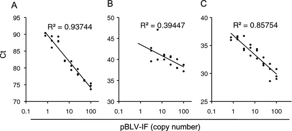 Sensitivity and reproducibility of each real-time PCR method using a pBLV-IF. The copy number of pBLV-IF was determined by calculation and TaKaRa Cycleave PCR. One hundred copy of pBLV-IF was diluted 2-fold to construct the standard curve. Threshold values (Ct) were plotted against corresponding pBLV-IF copy numbers and the correlation coefficient (R 2 ) was determined. The experiments were run in duplicate and independently repeated three times with the same dilutions. pBLV-IF standard curves were generated by using the results of CoCoMo-qPCR ( A ), the TaqMan MGB assay developed by Lew et al. ( B ), and TaKaRa Cycleave PCR ( C ).