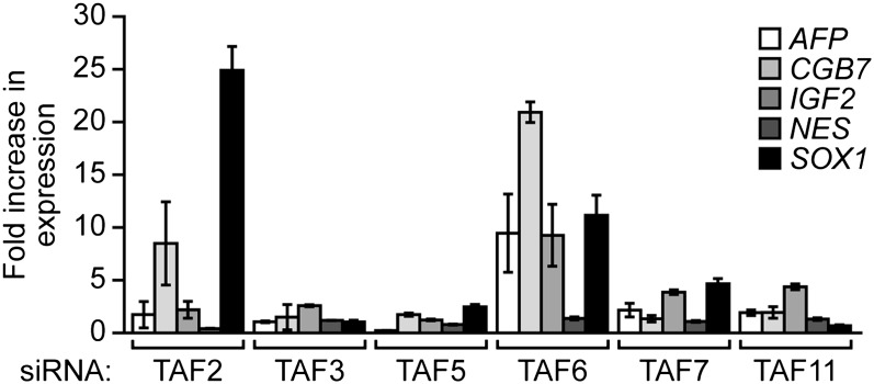 Validation of results presented in Figure 8B using a second, unrelated siRNA. qRT-PCR analysis monitoring expression of differentiation markers in H9 cells treated with a TAF siRNA. Values are given relative to that obtained with a control luciferase siRNA, which was set to 1. Data are represented as mean ± SEM. DOI: http://dx.doi.org/10.7554/eLife.00068.022