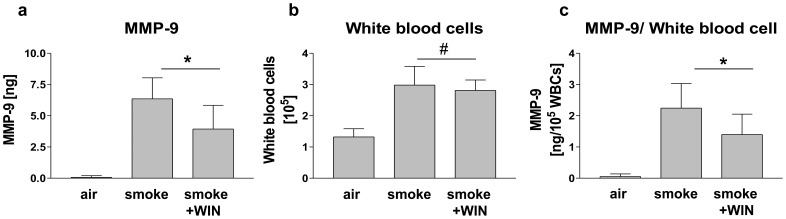 Treatment with WIN reduced MMP-9 protein in bronchoalveolar lavage fluid (BALF) of mice with smoke-induced lung inflammation. Mice were exposed to air, cigarette smoke (smoke), or cigarette smoke plus i.p. treatment with 5 mg/kg/d WIN (smoke + WIN). (a) MMP-9 protein was measured by ELISA in BALF. Cigarette smoke-exposure enhances the MMP-9-content of BALF. I.p application of WIN during cigarette smoke-exposure reduced MMP-9 in BALF. (b) Number of white blood cells (WBCs) in BALF measured by haemocytometry. Cigarette smoke-exposure enhanced the content of WBCs in BALF significantly. I.p. application of WIN during cigarette smoke-exposure did not alter the number of WBCs. (c) Ratio of MMP-9/10 5 WBCs. The amount of MMP-9 per WBC decreased upon i.p. application of WIN significantly. Data are shown as means +/− SD, n = 7 (air) n = 8, (smoke), n = 9 (smoke+WIN). *p