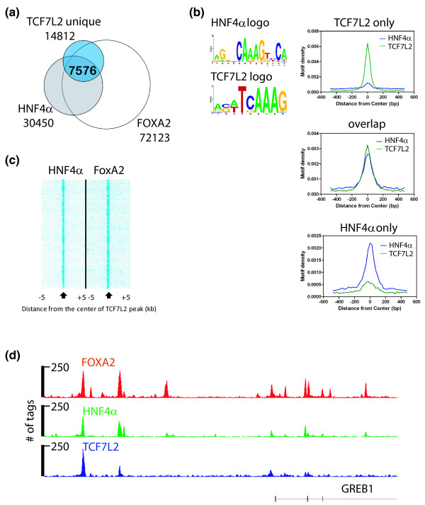 Association of <t>TCF7L2</t> and HNF4α in HepG2 cells . (a) HNF4α and FOXA2 ChIP-seq data were downloaded from the UCSC genome browser, and peaks were called and overlapped with the HepG2 cell type-specific TCF7L2 peaks. (b) Peaks bound only by HNF4α, only by TCF7L2, or by both factors were analyzed for the presence of HNF4α and TCF7L2 motifs. (c) For the set of 7,576 peaks bound by all three factors, the location of the HNF4α and FOXA2 peaks were plotted relative to the center of the TCF7L2 peak. (d) A comparison of TCF7L2, HNF4α, and FOXA2 binding patterns near the GREB1 locus is shown. The hg19 genomic coordinates are chr2:11,636,208-11,708,654. The number of tags reflecting the ChIP enrichments is plotted on the y-axis.