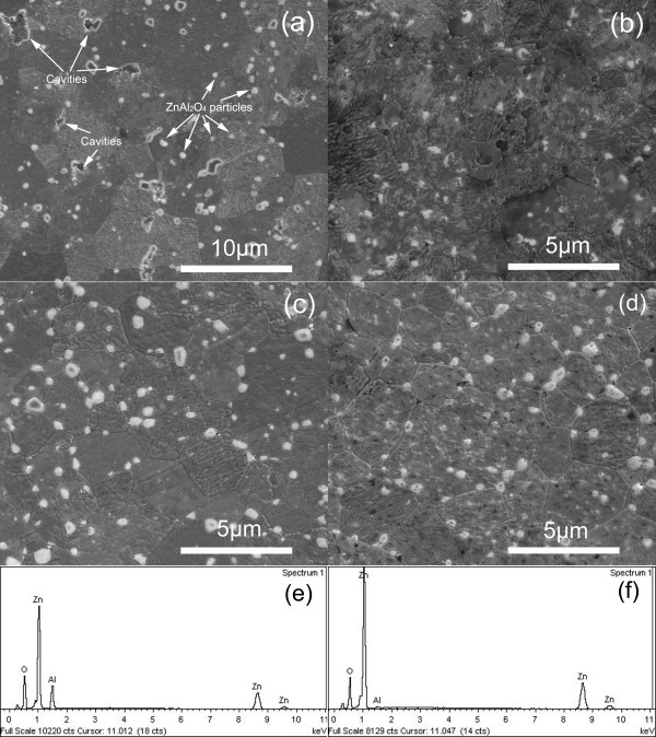 <t>SEM</t> images and EDS analysis of sintered ceramics. SEM images of sintered ceramics: ( a ) <t>AZO:Y</t> 0 , ( b ) AZO:Y 0.1 , ( c ) AZO:Y 0.15 , and ( d ) AZO:Y 0.2 . EDS analysis of a ( e ) white ZnAl 2 O 4 particle and ( f ) AZO:Y grain in the AZO:Y 0.2 ceramic sample.