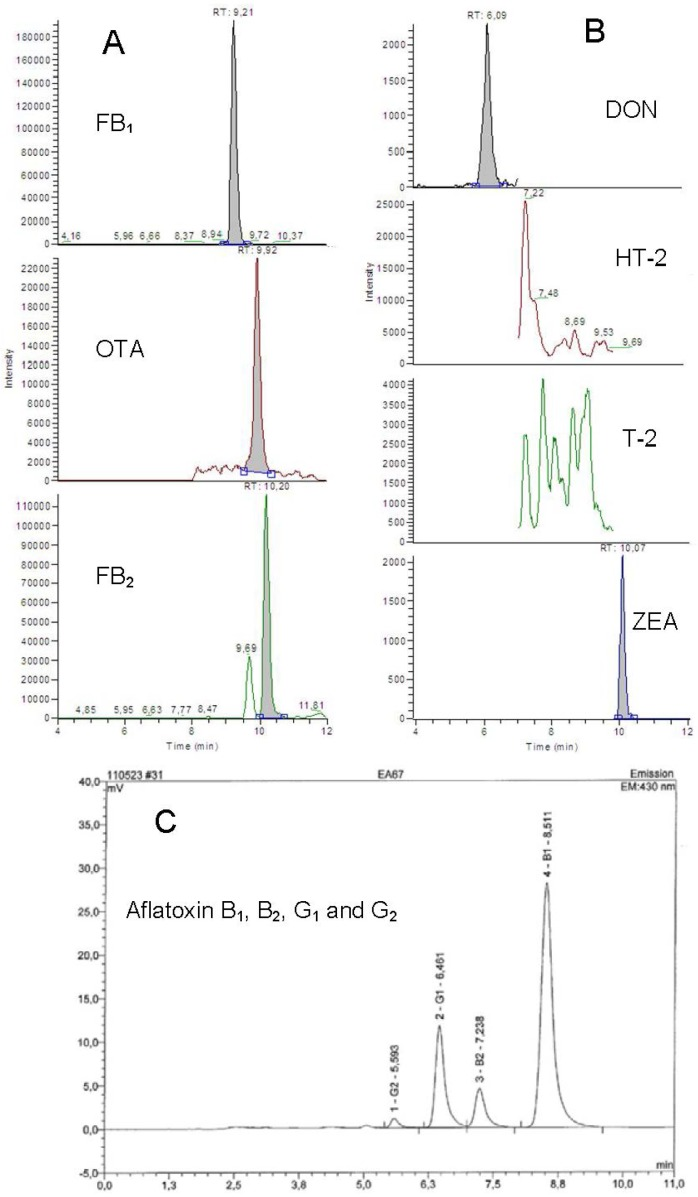 Chromatograms of one of the cattle feed samples analyzed. A and B : Selected Reaction Monitoring (SRM) chromatograms from the liquid chromatography tandem mass spectrometry (LC-MS/MS) analysis, the sample contained 1800, 17, 520, 850 and 60 µg/kg of FB 1 , OTA, FB 2 , DON and ZON, respectively. T-2 or HT-2 toxin was not detected. C : Chromatogram from the HPLC-fluorescence analysis, the sample contained aflatoxins B 1 , B 2 , G 1 and G 2 at concentrations of 41.8, 3.4, 25.4 and 2.3 µg/kg, respectively.