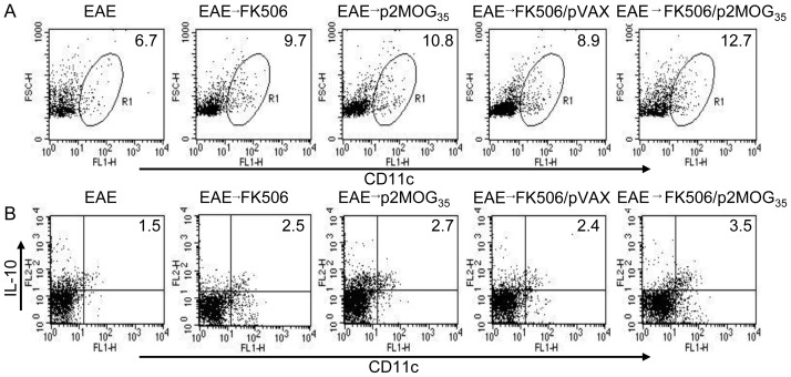 Tolerogenic DCs were stimulated in treated EAE mice. On day 3 after the second treatment, the splenocytes were prepared and intracellularly stained with anti-CD11c and anti-IL-10 mAbs. A. CD11c + cells were counted relatively to total splenocytes by flow <t>cytometry.</t> B. CD11c + IL-10 + cells were counted relatively to total CD11c + DC cells by flow cytometry. Shown in each panel is 1 of at least 3 experiments with similar results.