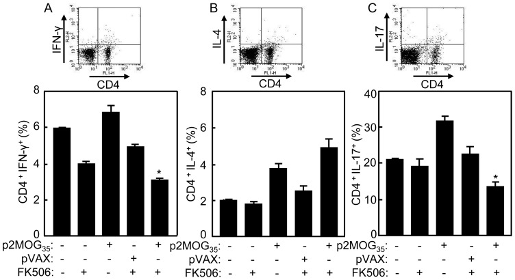 Suppression of Th1 and Th17 cell responses in treated EAE mice. At day 4 after the second treatment, the splenocytes of treated mice were prepared for intracellular staining. A. The splenocytes were intracellularly stained with anti-CD4 and anti-IFN-γ mAbs. CD4 + IFN-γ + T cells were counted relatively to total CD4 T cells by flow cytometry. B. The splenocytes were intracellularly stained with anti-CD4 and anti-IL-4 mAbs. CD4 + IL-4 + T cells were counted relatively to total CD4 T cells by flow cytometry. C. The splenocytes were intracellularly stained with anti-CD4 and anti-IL-17 mAbs. CD4 + IL-17 + T cells were counted relatively to total CD4 T cells by flow cytometry. Bar, mean and SD from 3 independent experiments, each using at least three mice per group (n = 3); *, p