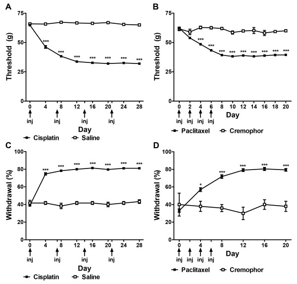 Time course of development of chemotherapy-induced peripheral neuropathy evoked by cisplatin and paclitaxel treatment. Mechanical ( A , B ) and cold ( C , D ) allodynia developed following cisplatin ( A , C ) or paclitaxel ( B , D ) treatment. Arrows show timing of injections of chemotherapeutic agents. Data are expressed as mean ± SEM (paclitaxel, n = 76; cremophor, n = 5; cisplatin, n = 36; saline, n = 6). *** P