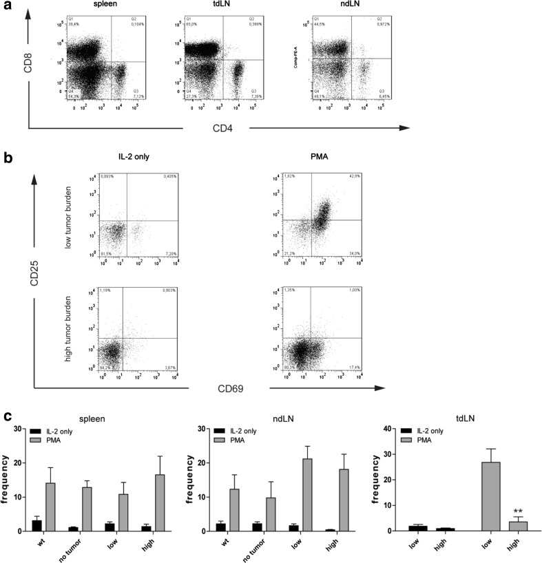 Frequency of CD4 + and CD8 + T cells upon IL-2 and PMA stimulation. a Representative dot plots of CD4 and CD8 stainings in spleen, tumor-draining (tdLN), and non-draining (ndLN) lymph nodes of a high tumor burden LLA-TG-3 mouse upon IL-2/PMA stimulation; b representative flow cytometry analysis of gated CD8 + T cells in tumor-draining LN of low and high tumor burden LLA-TG-3 mice upon stimulation with IL-2 (500 IU/ml) or IL-2 and PMA (200 nM). Numbers in top right quadrants indicate CD69 + CD25 + cells; c the frequency of CD69 + /CD25 + CD8 + T cells in spleen, tdLN, and ndLN of wt and LLA-TG-3 mice was analyzed as in a ; n = 10 for wt mice; n = 6 for no tumor and low tumor burden LLA-TG-3 mice; n = 8 for high tumor burden LLA-TG-3 mice. Depicted are mean values + SEM. ** p