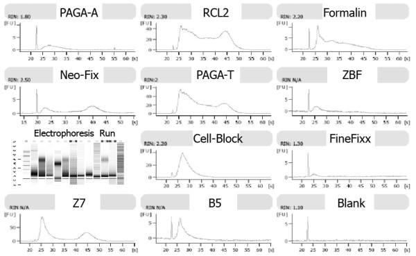 Results of <t>RNA</t> 6000 <t>LabChip</t> analysis. RNAs extracted from different fixatives show different RIN and electrophoresis curves.